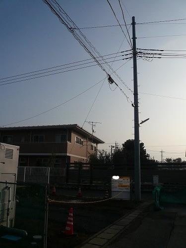 P1030551